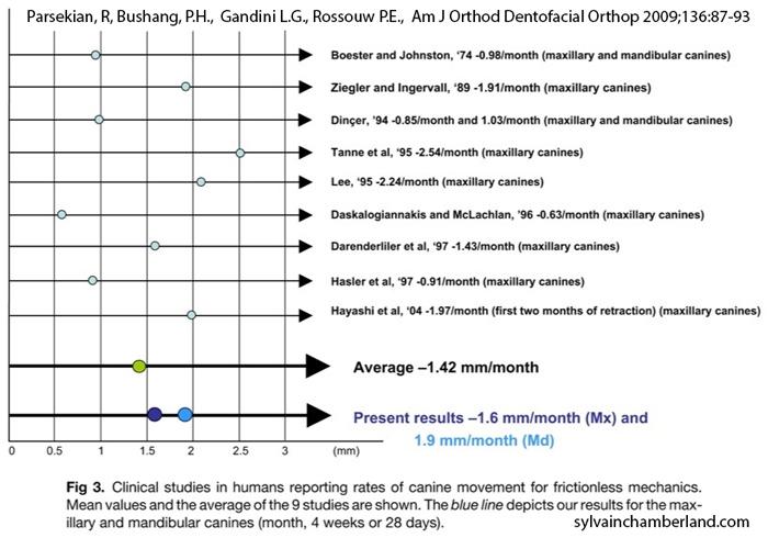 Taux moyen de mouvement dentaire-Dr Chamberland orthodontiste à Québec