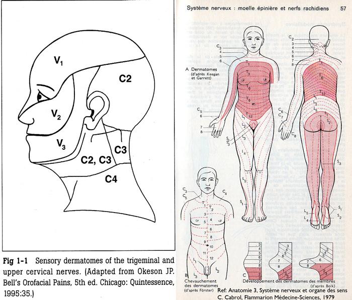 Trouble à l'articulation temporo-mandibulaire ...